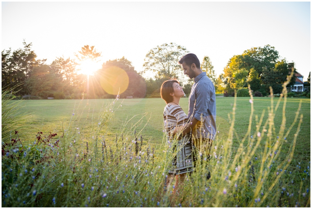 Engaged couple at sunset amongst flowers at Green Spring Gardens in Alexandria, Virginia