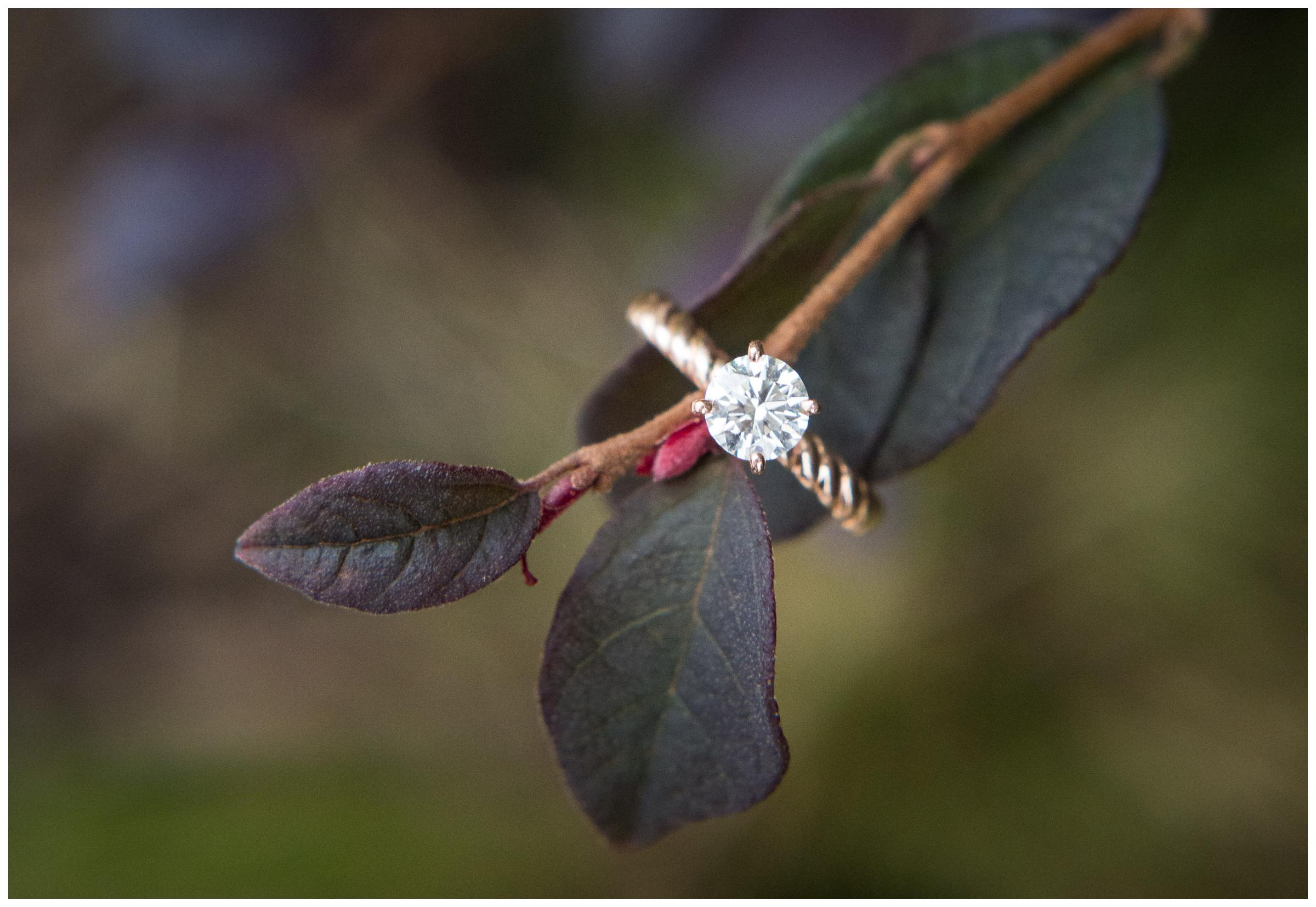 engagement ring with rose gold band