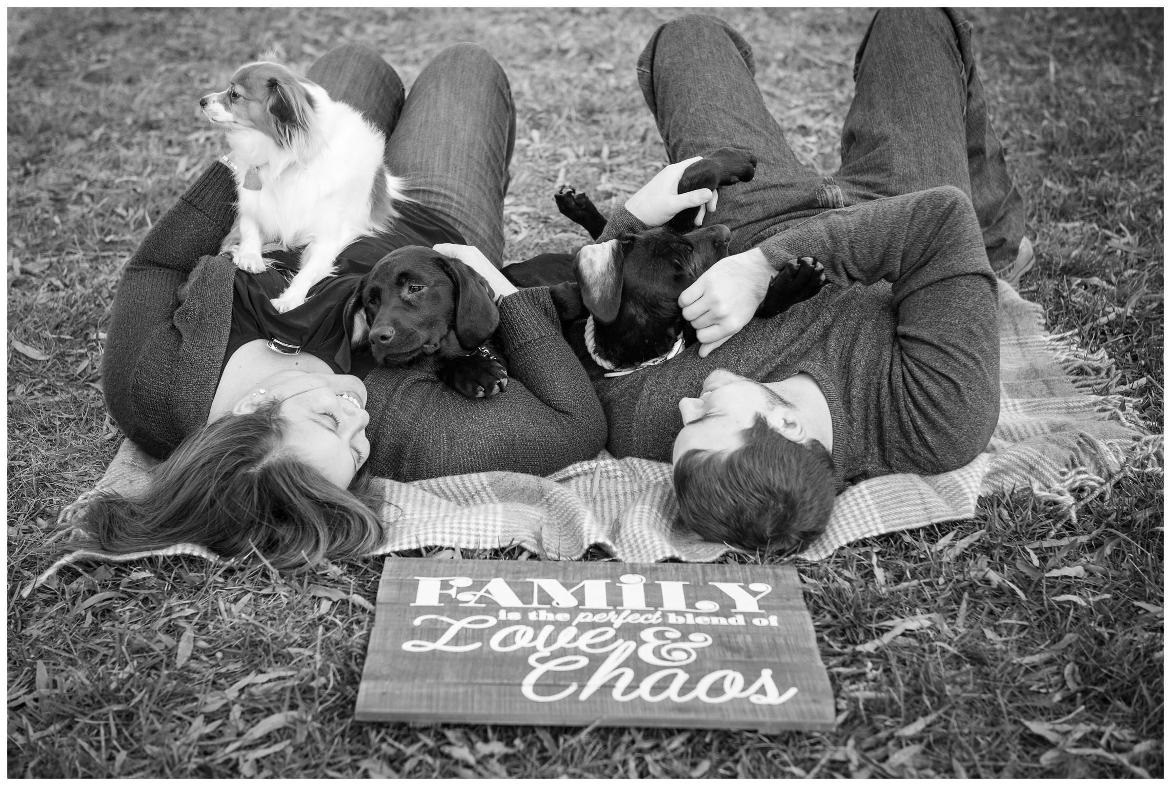 engaged couple with puppies