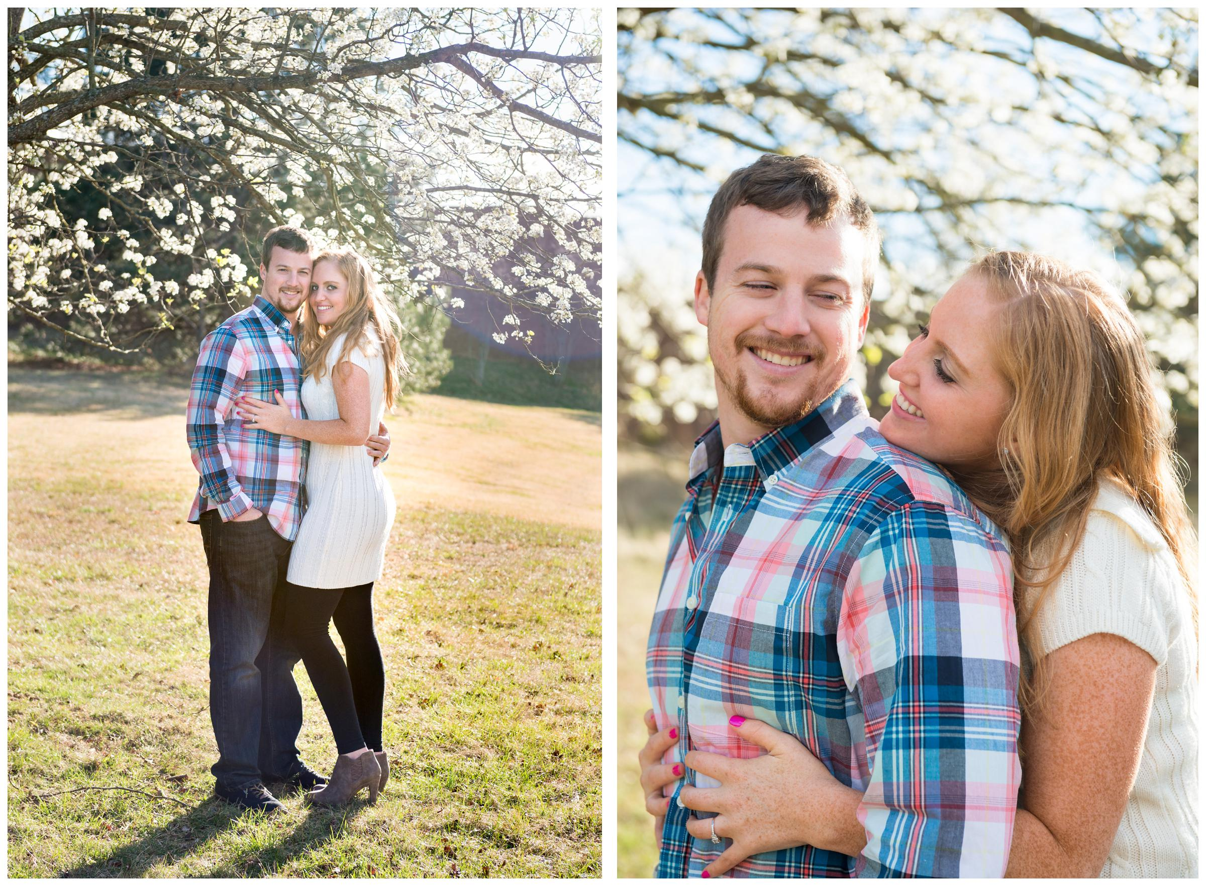 engaged couple under cherry blossom tree during engagement session in Rockville, Maryland