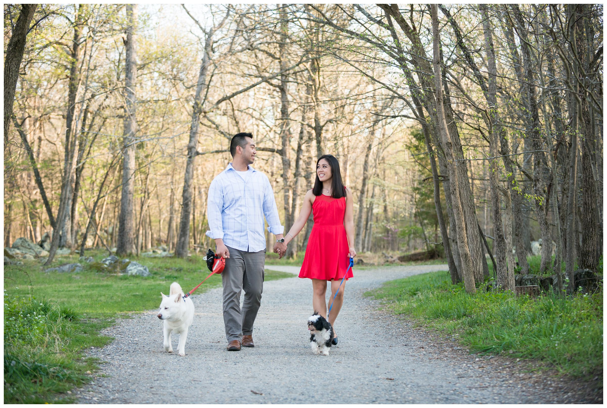 engaged couple walking their dogs at Great Falls Park in Northern Virginia