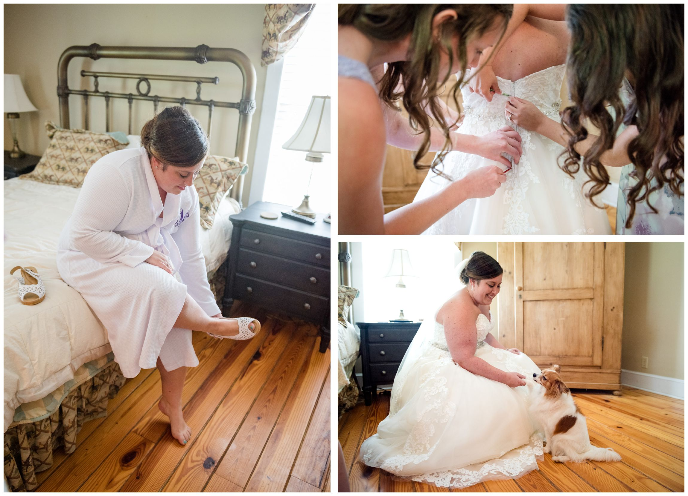 bride getting dressed and greeting dog