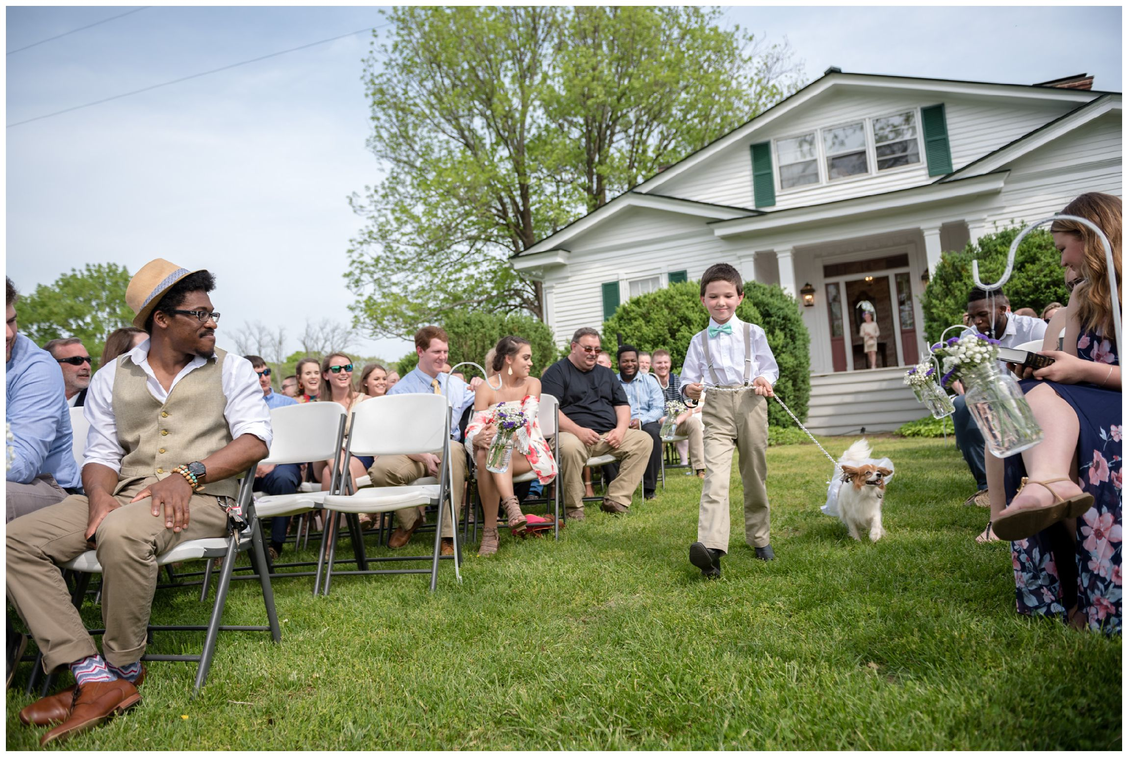 dog acts as ring bearer during wedding ceremony at Wolftrap Farm in Virginia