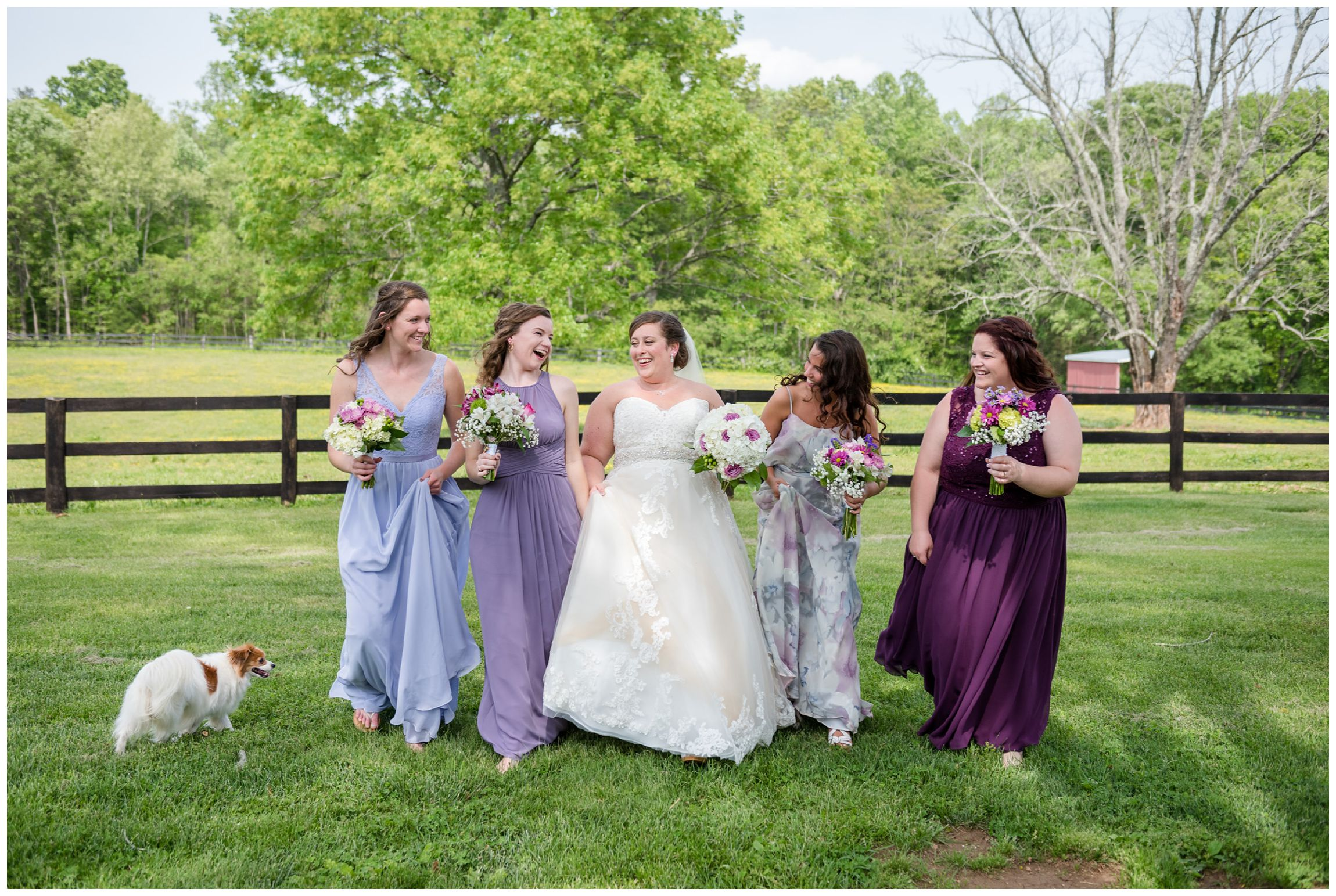 bridesmaids at rustic Wolftrap Farm wedding in Virginia