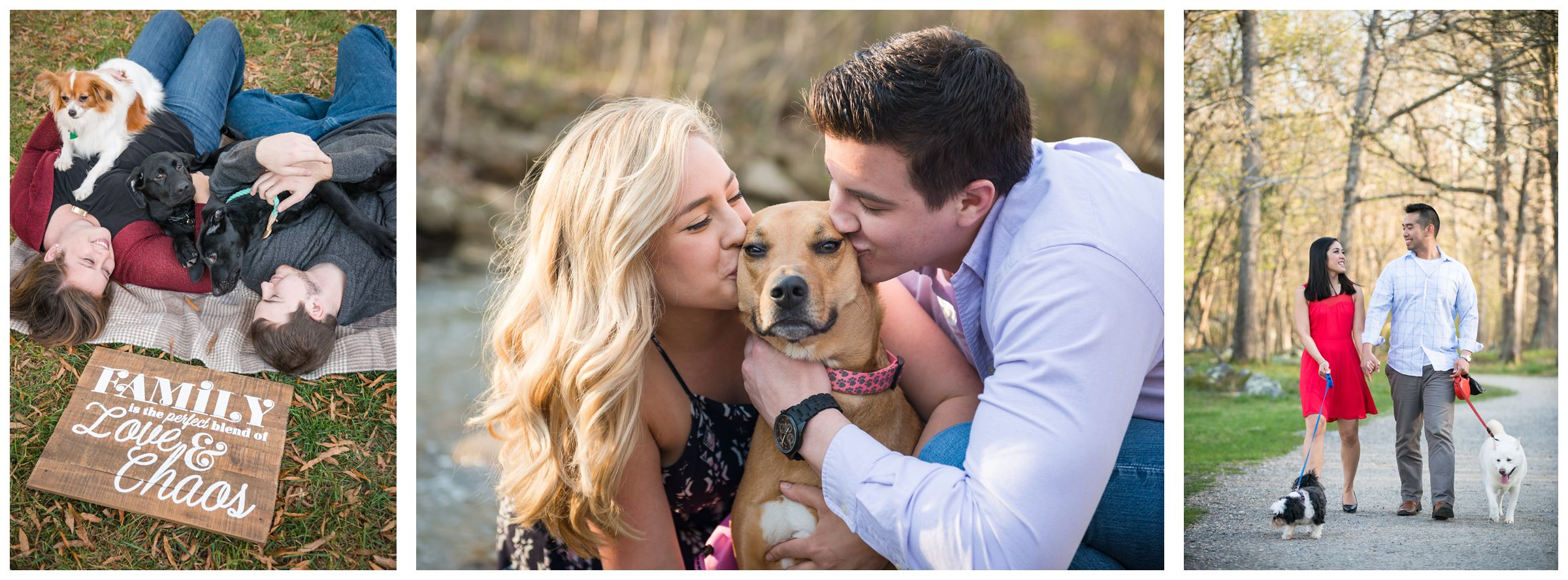 bringing your dog to your engagement session