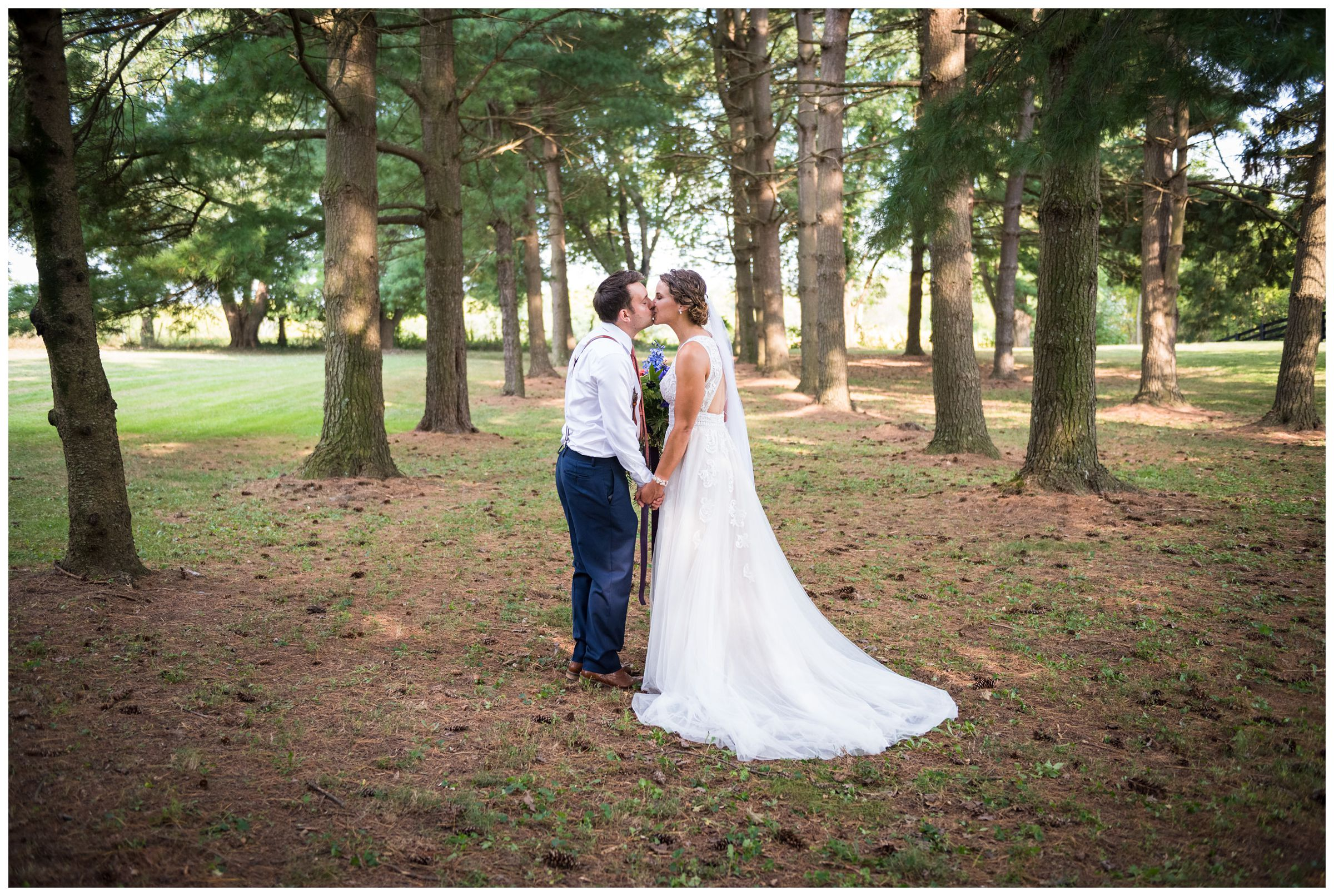 bride and groom wedding portraits under pine tree forest during rustic barn wedding in Lancaster, Ohio